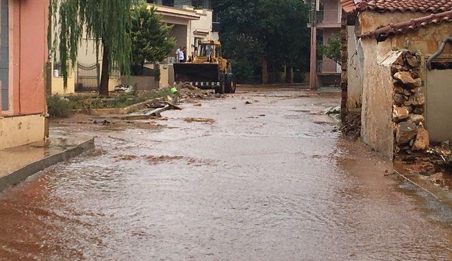Μισή ώρα βροχής γέμισε ξανά με νερό τους δρόμους της Μάνδρας