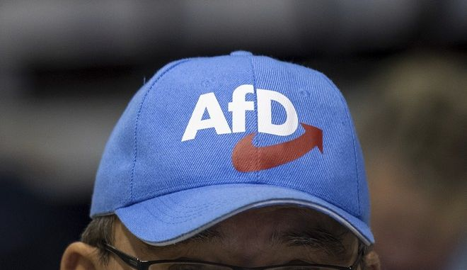 Εκπρόσωπος του AfD