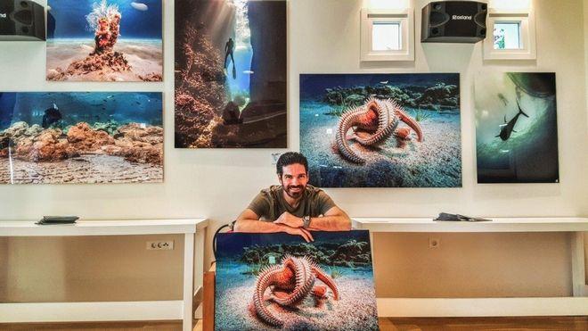 Φωτογραφική μαγεία: Βουτιά στην υποβρύχια Ελλάδα με μια ανάσα