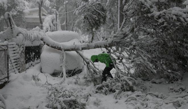 Χιονόπτωση στον Διόνυσο Αττικής, την Τρίτη 16 Φεβρουαρίου 2021