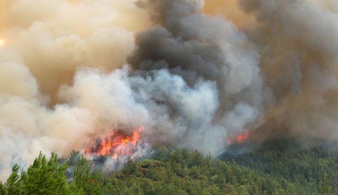 Πυρκαγιά στο Ραχώνι Θάσου την Κυριακή 11 Σεπτεμβρίου 2016.  (EUROKINISSI)