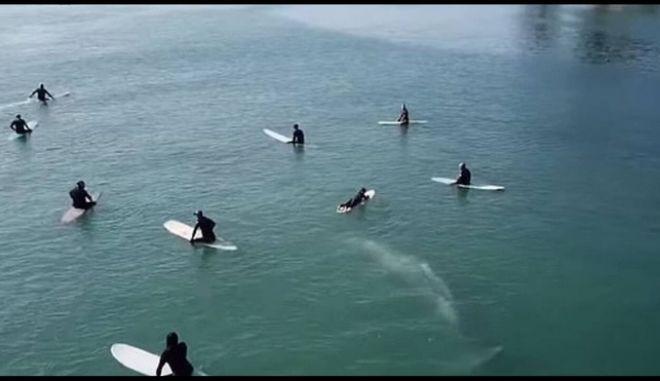 Εικόνα από την φάλαινα που περνάει κάτω από σέρφερς