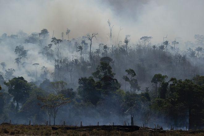 Φωτιά στον Αμαζόνιο τον Αύγουστο του 2019