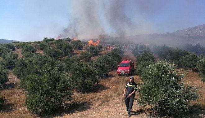 Μαίνονται οι φωτιές της Κρήτης - Υπό μερικό έλεγχο η Κάρυστος