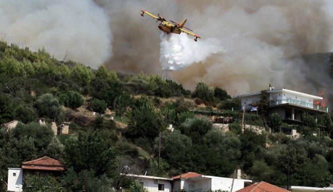 Φωτιά στην περιοχή Ροδινών - Κοστομέρας - Μίνθης στη Ζαχάρω Ηλείας την Κυριακή 20 Αυγούστου 2017. (EUROKINISSI/ILIALIVE.GR/ΓΙΑΝΝΗΣ ΣΠΥΡΟΥΝΗΣ)