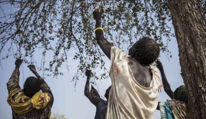 ΟΗΕ: Το ήμισυ του παγκόσμιου πληθυσμού θα υποσιτίζεται έως το 2030