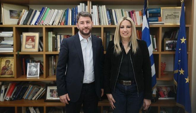 Συνάντηση Φώφης Γεννηματά με Νίκο Ανδρουλάκη