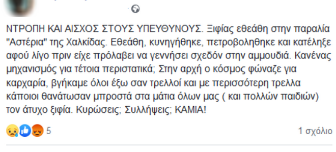 Εξοργιστικό: Ξιφίας βγήκε στα ρηχά της Χαλκίδας και τον πετροβόλησαν