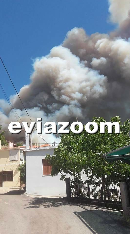 Σε εξέλιξη μεγάλη φωτιά σε παρθένο δάσος στη Δίρφη της Εύβοιας
