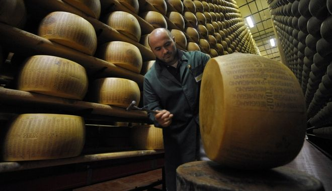 Quality control employee Fabrizio Giberti  inspects a  Parmigiano Reggiano Parmesan cheese wheel amongst those stacked in the Credito Emiliano bank temperature-controlled vault, in Montecavolo, near Reggio Emilia, Italy, Thursday Aug. 20, 2009. Row upon row of 39-kilogram (85-pound) wheels of straw-colored Parmesan cheese, stacked some 10 meters (33 feet) high at a secure warehouse, age for as many as two years under the care of bank employees trained in the centuries-old art of Parmesan making. Parmesan producers to pump cash into their business by using their product as collateral while it is otherwise sitting on a shelf for the long aging process. While the mechanism was not born out of the current economic crisis, dating rather from Italy's post-World War II years, producers say it is ever more important because it ensures that credit keeps flowing during otherwise tight times. (AP Photo/Marco Vasini)