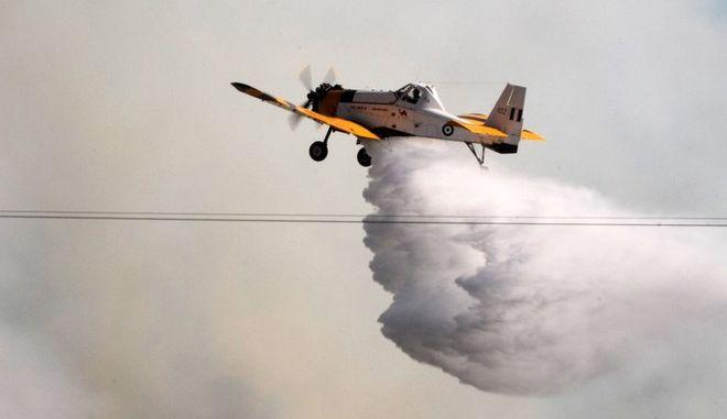 Πυρκαγιά στην Μάκιστο Ηλείας.  (EUROKINISSI/ILIALIVE.GR/ΓΙΑΝΝΗΣ ΣΠΥΡΟΥΝΗΣ)
