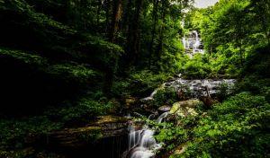 Γιατί οι μαύρες τρύπες είναι απλούστερες από τα δάση