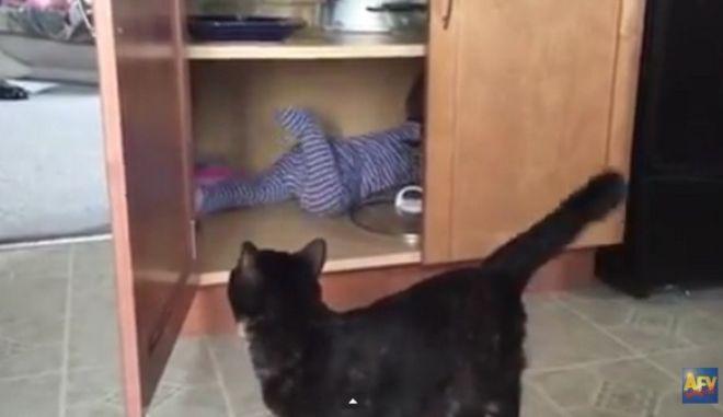 Βίντεο: Ζηλιαρόγατα κλείνει το μωρό στο ντουλάπι