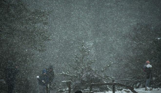 """Σύμφωνα με τις προβλέψεις των μετεωρολόγων, η κακοκαιρία """"Ζηνοβία"""" χτυπά με έντονες χιονοπτώσεις και παγετό"""