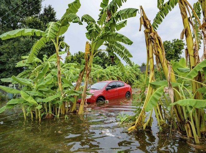 Πλημμύρες στη Νέα Ορλεάνη από την τροπική καταιγίδα Μπάρι