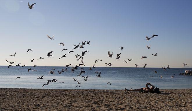 Περιστέρια πετούν πάνω από λουόμενο στην παραλία Αλίμου