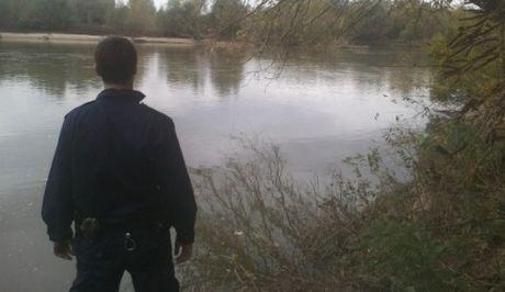 Αστυνομικός σε διαθεσιμότητα. Δολοφόνησε δύο σκυλιά στη Θεσπρωτία