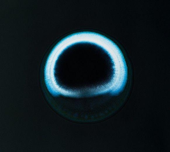 Φωτογραφίες: Τα ναρκωτικά κάτω από το μικροσκόπιο