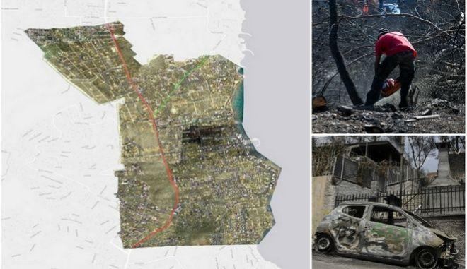 Αστεροσκοπείο Αθηνών: Πλήρως καμένο το 70% των εκτάσεων στο Μάτι