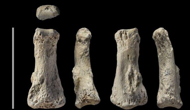 Βρέθηκε το αρχαιότερο εκτός Αφρικής απολίθωμα Homo sapiens