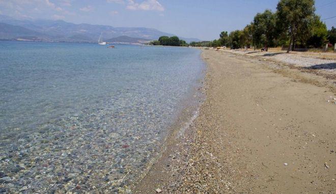 Παραλία του Αγίου Γεωργίου Ευβοίας (Φωτό Αρχείου)