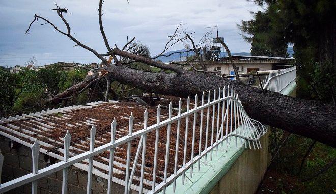 """Καταστροφές από το πέρασμα του μεσογειακού κυκλώνα """"Ζορμπά"""""""