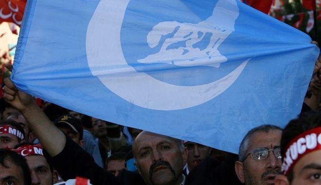 """Σημαία των """"Γκρίζων Λύκων"""""""