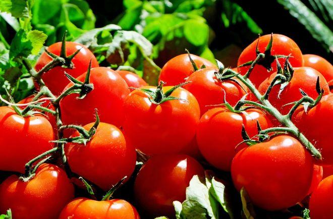 Αβέβαιες οι προοπτικές για τα λαχανικά θερμοκηπίου