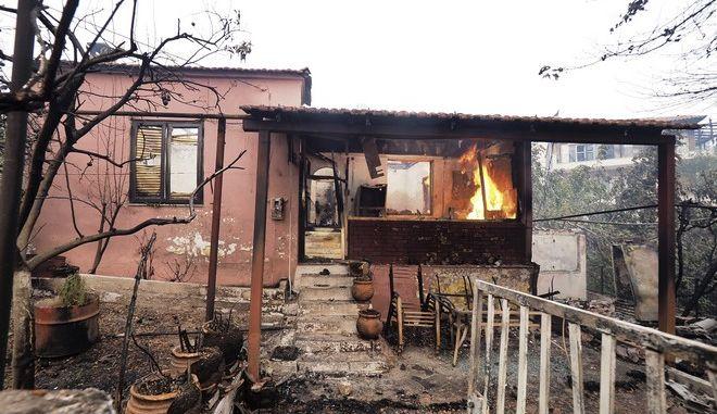 Φωτιά στις Ροβιές στην Εύβοια. Φωτογραφία αρχείου
