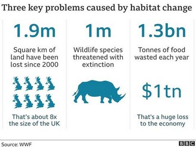 Η άγρια ζωή εκπέμπει SOS - Οι πληθυσμοί μειώθηκαν κατά 68% από το 1970