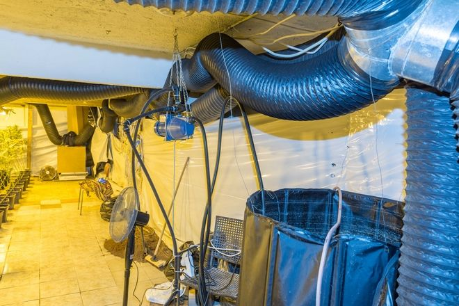 Για πρώτη φορά εξαρθρώθηκε τεράστια γραμμή παραγωγής υδροπονικής κάνναβης