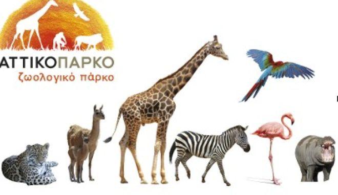 Το Αττικό πάρκο γιορτάζει την Παγκόσμια ημέρα των ζώων με πλήθος δραστηριοτήτων