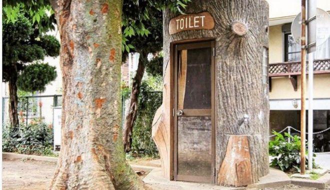 Δημόσιες τουαλέτες στην Ιαπωνία (Instagram)