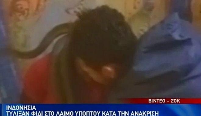 Φρίκη: Ανακρίνουν ύποπτο τυλίγοντας φίδι στο κεφάλι του