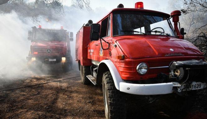 Οχήματα της Πυροσβεστικής σε δασική πυρκαγιά