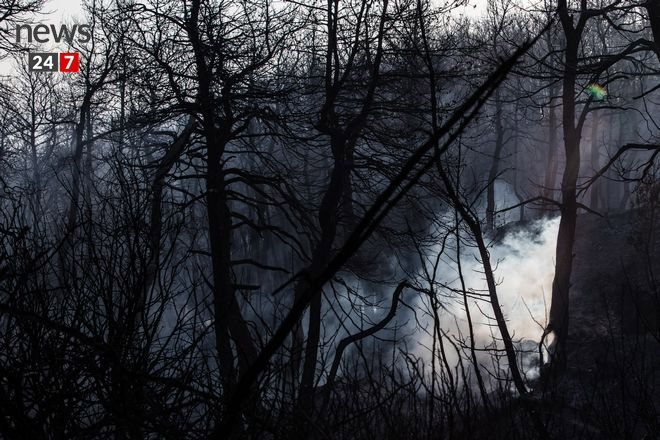 Στάχτη και αποκαΐδια ο Κάλαμος: Η εικόνα μετά τη φωτιά