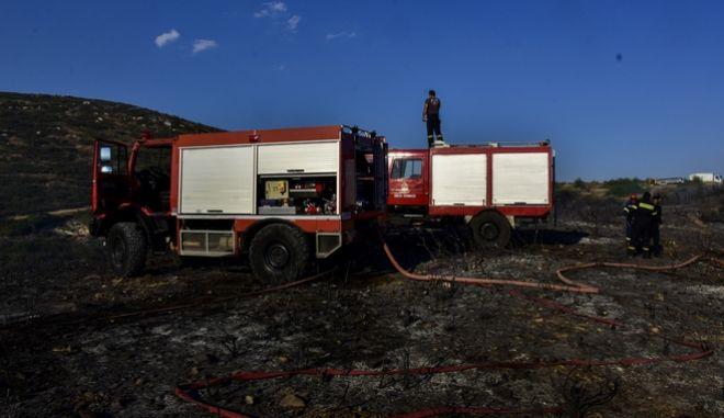 Πυροσβέσετες επιχειρούν σε κατάσβεση πυρκαγιάς.