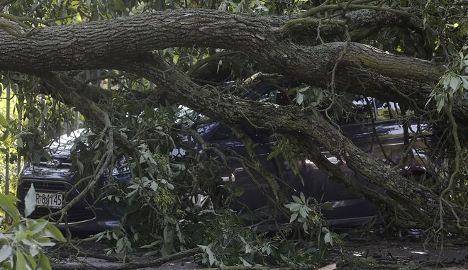 Broken trees lay on car on a street in Warsaw, Poland, Thursday, June 29, 2017, after a heavy storm hit the city. (AP Photo/Czarek Sokolowski)