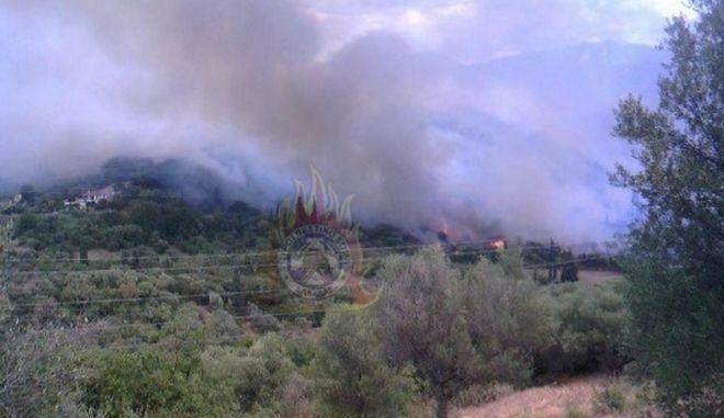 Φωτιά στη Φωκίδα: Σε ετοιμότητα για εκκένωση οι κάτοικοι δύο χωριών