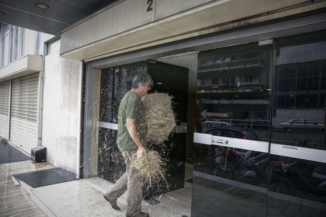 Ακτιβιστές πετούν άχυρο στην είσοδο των γραφείων των Ανεξάρτητων Ελλήνων το απόγευμα της Δευτέρας 18 Ιουνίου 2018. (EUROKINISSI/ΣΤΕΛΙΟΣ ΜΙΣΙΝΑΣ)