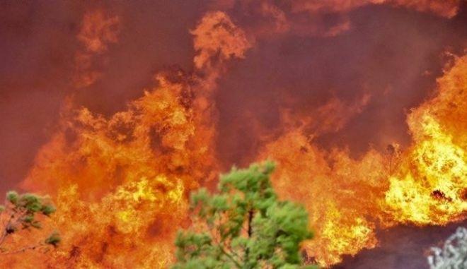 Αποτέλεσμα εικόνας για πυρκαγιές