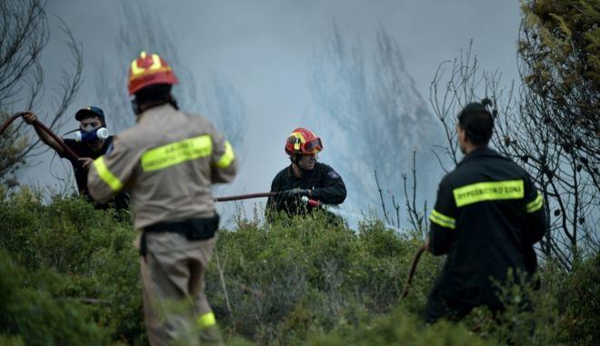 Πυροσβέστες επιχειρούν σε δασική πυρκαγιά