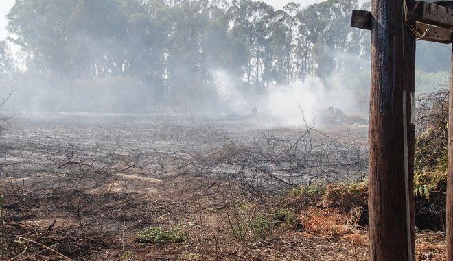 Πυρκαγιά στην περιοχή Σκαμνούλα της Πρέβεζας. Λόγω των ισχυρών ανέμων στην περιοχή η φωτιά επεκτάθηκε και στην πόλη με αποτέλεσμα να κινδυνεύουν σπίτια και η περιουσία των κατοίκων. Επιχείρησαν 30 Πυροσβέστεες με 15 οχήματα και 3 αερσκάφοι τύπου PZL. Πέμπτη 10 Αυγούστου 2017.(EUROKINISSI/ΓΙΩΡΓΟΣ ΕΥΣΤΑΘΙΟΥ)