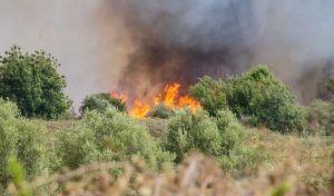 Φωτιά στην Αχαΐα κοντά σε κατοικημένη περιοχή