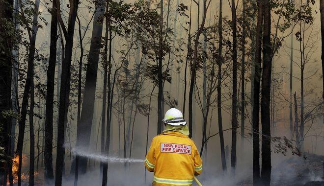Πυρκαγιές στην Αυστραλία: Ένας πυροσβέστης σβήνει τις φωτιές