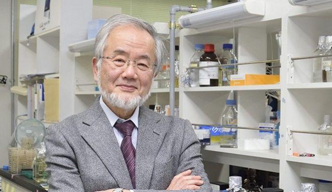 Στον Γιοσινόρι Οσούμι το Νόμπελ Ιατρικής 2016