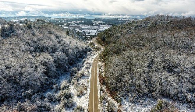 Χιονισμένο τοπίο στο δρυοδάσος της Φολόης στην Ηλεία. (EUROKINISSI/ILIALIVE.GR/ΓΙΑΝΝΗΣ ΣΠΥΡΟΥΝΗΣ)