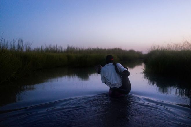 An MSF staff helps a young boy cross the swamps at dusk with his family to Kok Island after receiving for the first time in many month food distribution in the troubled Unity State in South Sudan.   Kok Island is the home to over two thousand IDP's who have fled the fighting in their home areas. In April 2015 after a rise in fighting in Unity State, thousands of civilians were forced to flee into the bush, swamps or into the UN Protection of Civilian site in Bentiu.