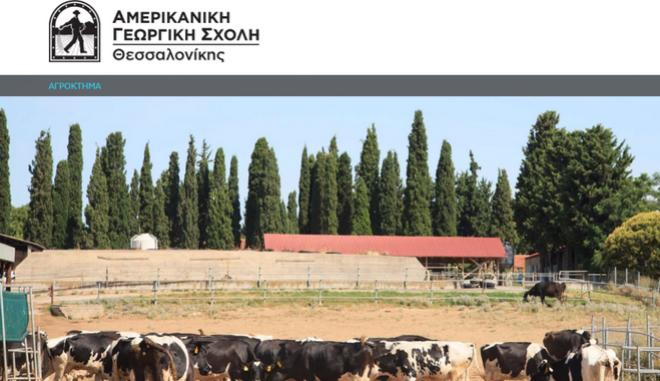 Αμερικάνικη Γεωργική Σχολή: Πρόγραμμα υποτροφιών για νέους κτηνοτρόφους με τη ΔΕΛΤΑ