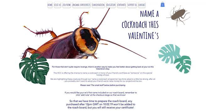 Valentine's Day: Δώσε το όνομα του πρώην σου σε μια κατσαρίδα και νιώσε καλύτερα